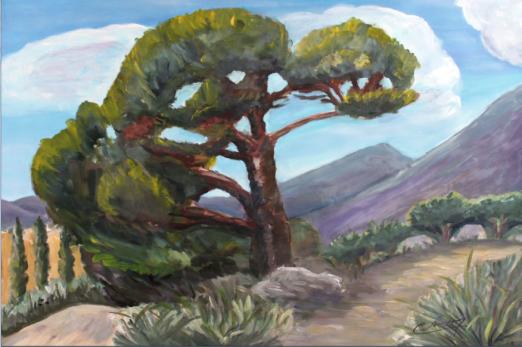 Le grand pin Huile