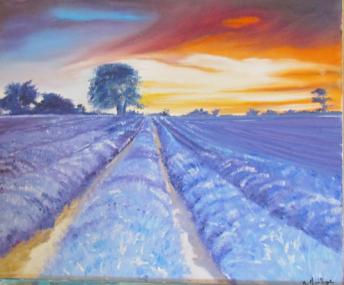 Coucher de soleil sur les lavandes Huile sur toile 8 paysage
