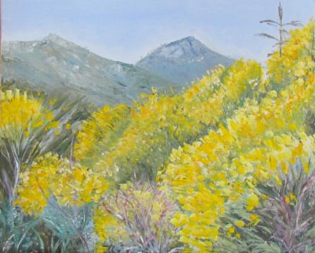 Genêts Huile sur toile 8 paysage